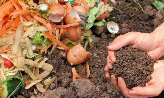 Entwurf zur Änderung der Bioabfallverordnung (BioAbfV) vorgelegt – Mehr Pflichten und erweiterter Anwendungsbereich