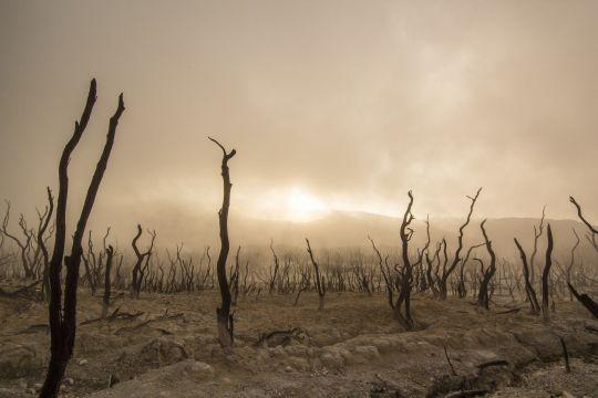 Beunruhigende Erkenntnisse des IPCC